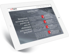 portfolio-Tablet-automyjnia